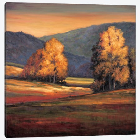 In All Its Glory II Canvas Print #JFR8} by Jeffrey Leonard Canvas Artwork