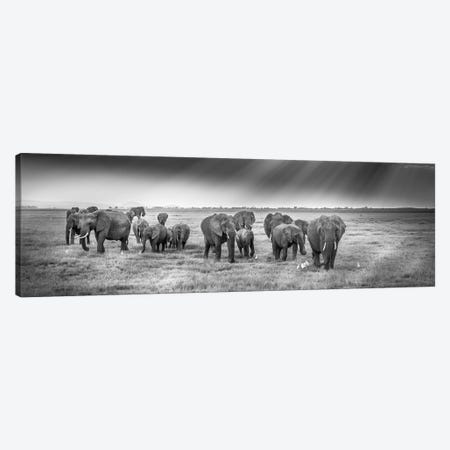 Breakfast With Pachyderms Canvas Print #JFS12} by Jeffrey C. Sink Canvas Artwork