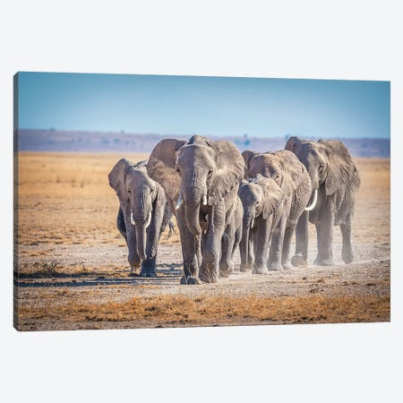 The Titans Canvas Print #JFS19} by Jeffrey C. Sink Canvas Wall Art