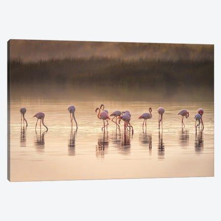 Photographic Ode To Monet Canvas Print #JFS36} by Jeffrey C. Sink Canvas Print