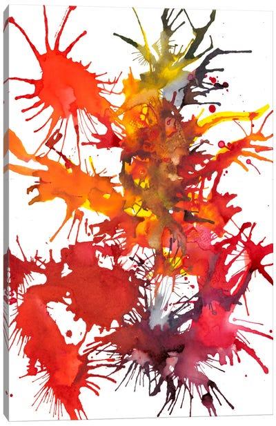 Fireworks Display I Canvas Art Print