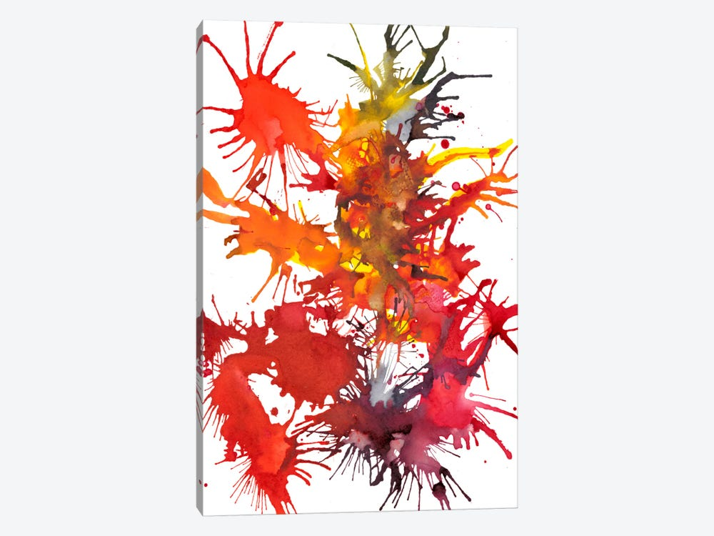 Fireworks Display I by Jodi Fuchs 1-piece Canvas Wall Art