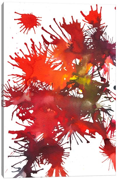 Fireworks Display II Canvas Art Print