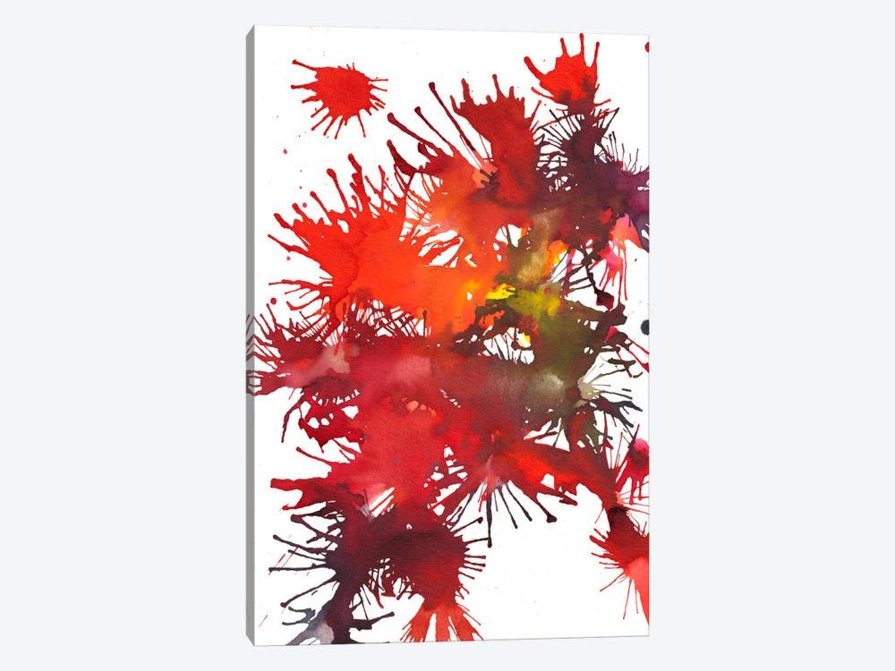 Fireworks Display II by Jodi Fuchs 1-piece Canvas Print