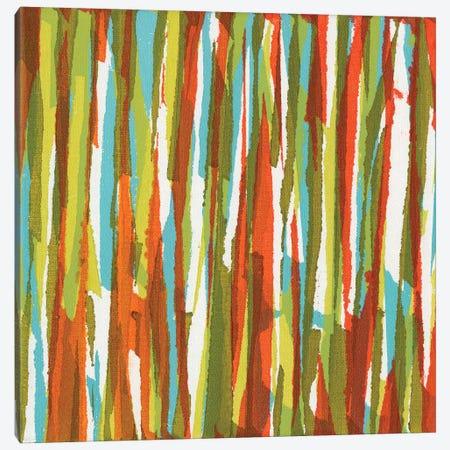Torn IX Canvas Print #JFU32} by Jodi Fuchs Canvas Art