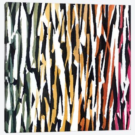 Torn VII Canvas Print #JFU35} by Jodi Fuchs Canvas Print