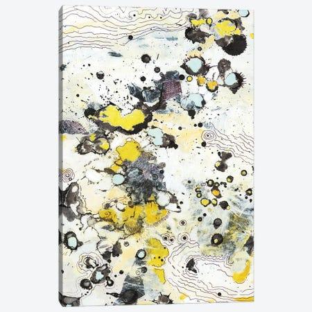Topo I Canvas Print #JFU48} by Jodi Fuchs Canvas Print
