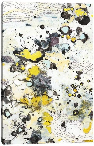 Topo I Canvas Art Print