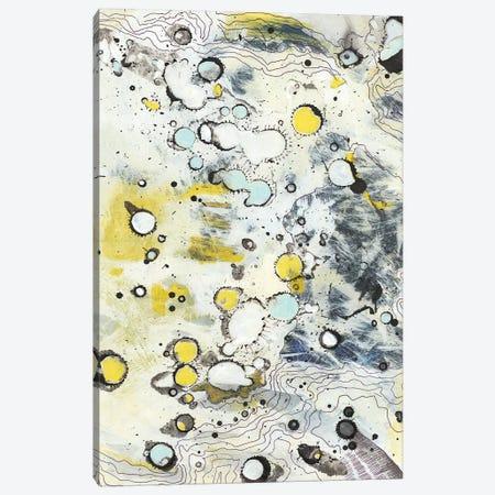 Topo II Canvas Print #JFU49} by Jodi Fuchs Canvas Print