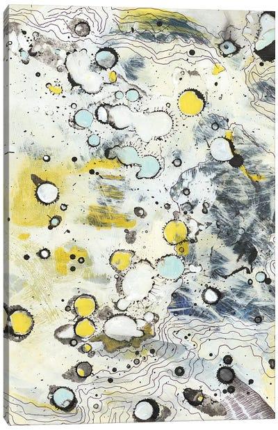 Topo II Canvas Art Print