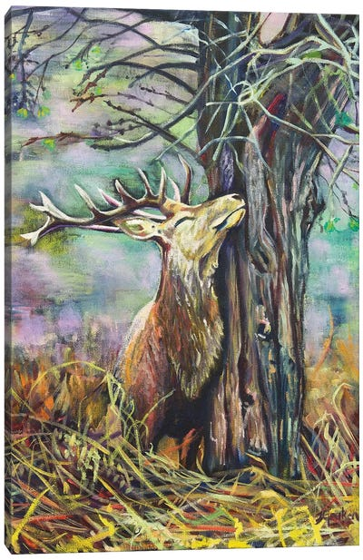 My Deer Canvas Art Print