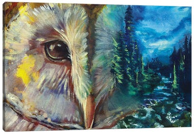 Birds Eye View Canvas Art Print