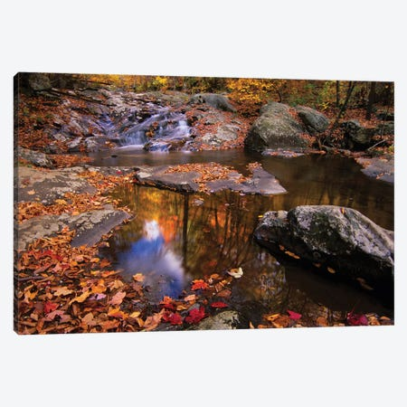 Autumn Landscape, Whiteoak Canyon, Shenandoah National Park, Virginia, USA Canvas Print #JGI2} by Jerry Ginsberg Canvas Print