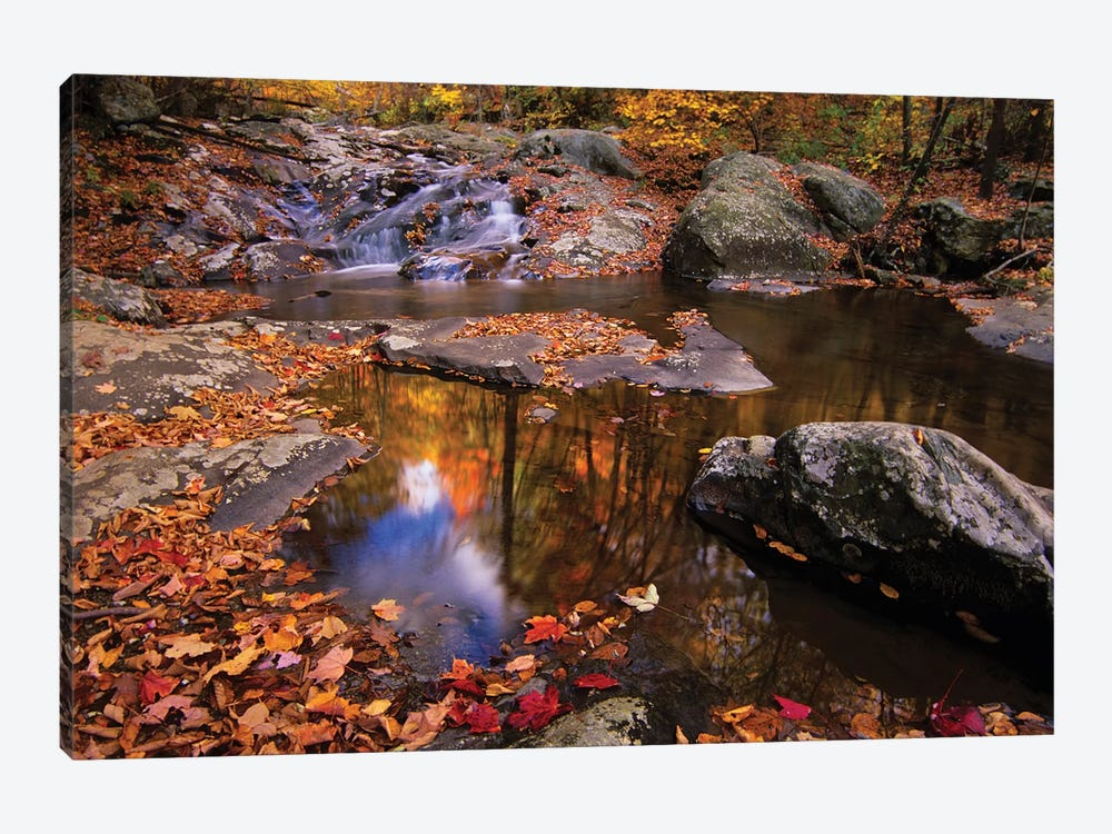 Autumn Landscape, Whiteoak Canyon, Shenandoah National Park, Virginia, USA by Jerry Ginsberg 1-piece Canvas Wall Art