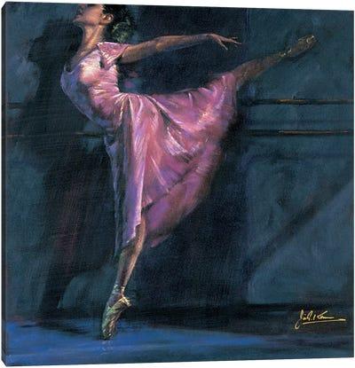 Deep Pink Canvas Art Print