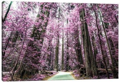 A Purple Forest Canvas Art Print