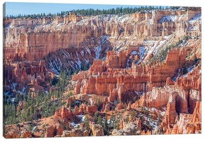 Bryce Canyon Beauty Canvas Art Print