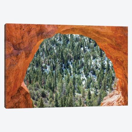 A Nature Lens Canvas Print #JGL133} by Joseph S. Giacalone Canvas Art Print