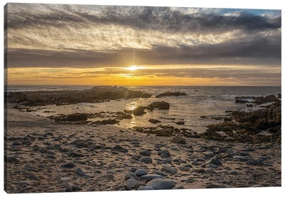 Asilomar Sunset I Canvas Art Print