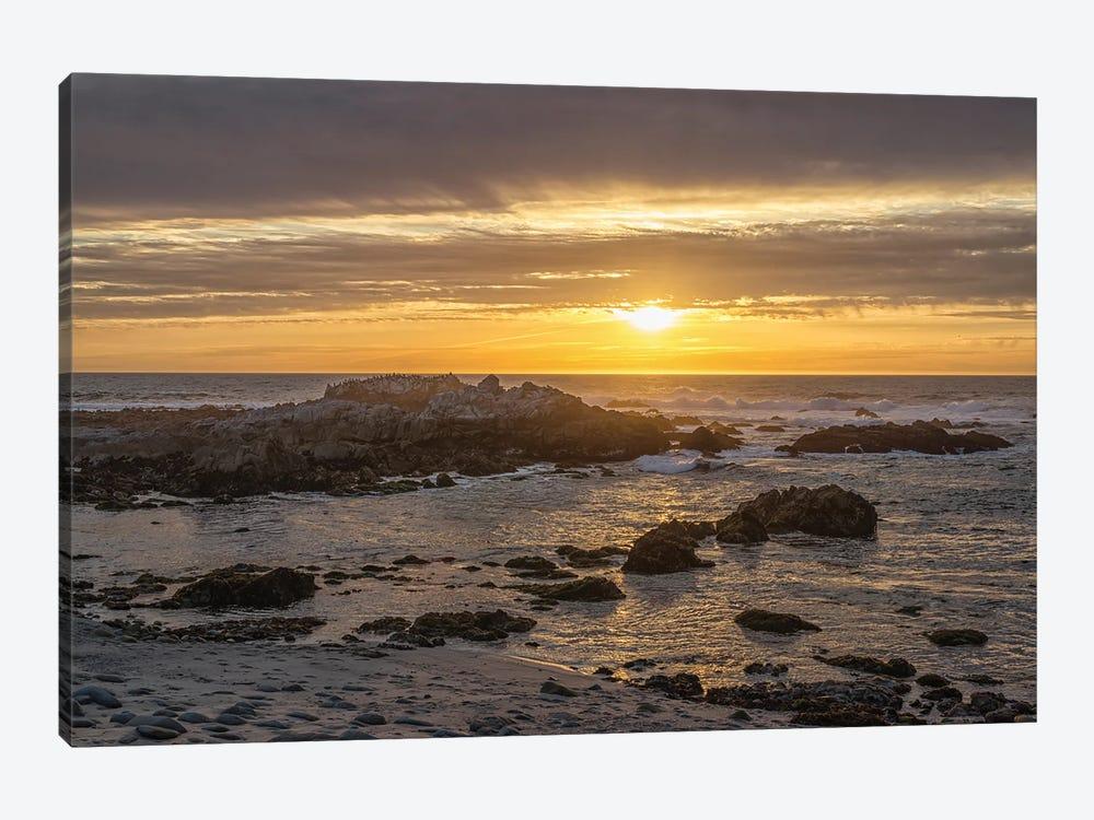 Asilomar Sunset II by Joseph S. Giacalone 1-piece Canvas Artwork