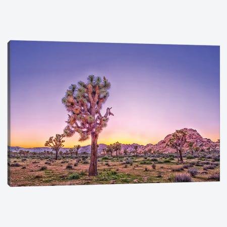 Purple Dawn Canvas Print #JGL166} by Joseph S. Giacalone Canvas Art Print