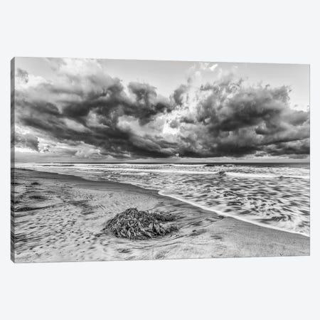 Ponto Beach Majesty Canvas Print #JGL6} by Joseph S. Giacalone Canvas Print