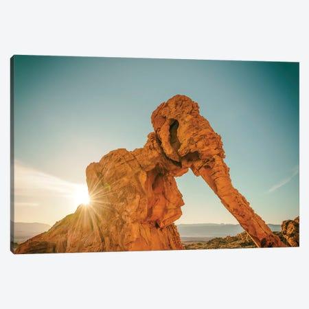 Elephant Rock Canvas Print #JGL82} by Joseph S. Giacalone Canvas Print