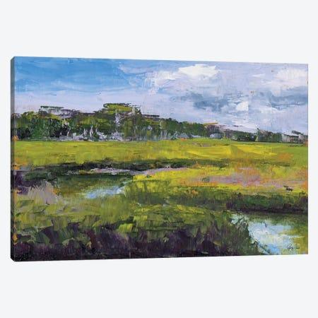 Meadow Canvas Print #JGN16} by Jenny Green Canvas Art Print