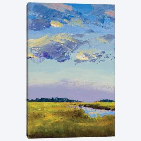 River Streams Canvas Print #JGN20} by Jenny Green Art Print