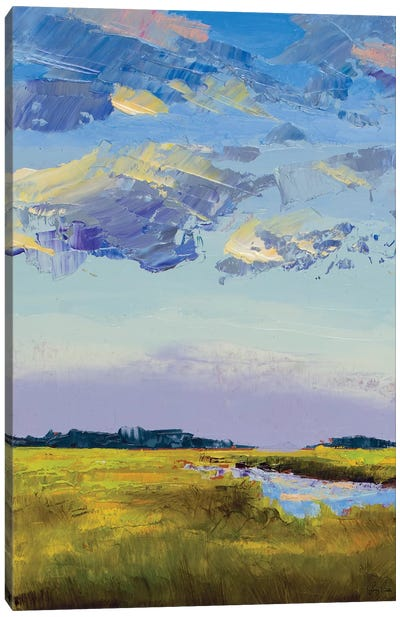 River Streams Canvas Art Print