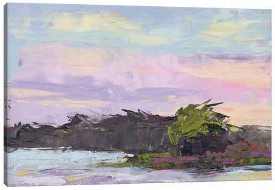 Georgia Skies Canvas Art Print
