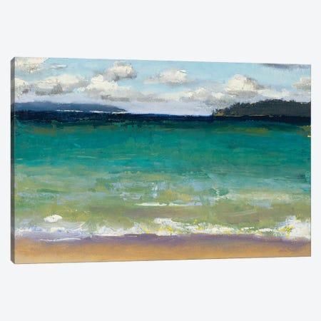 Caribbean Beaches Canvas Print #JGN26} by Jenny Green Canvas Artwork