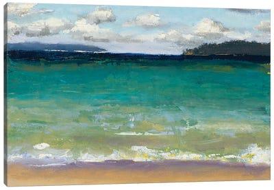 Caribbean Beaches Canvas Art Print