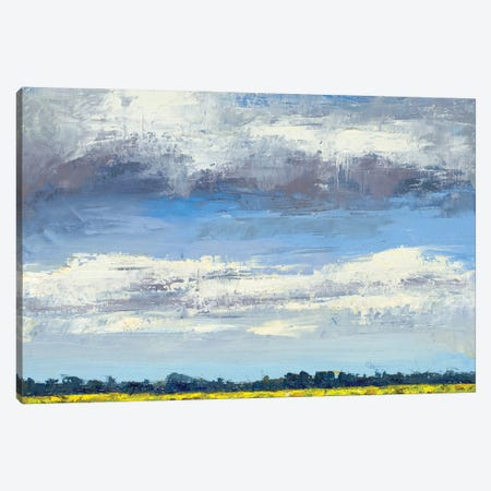 Cloud Coverage 3-Piece Canvas #JGN27} by Jenny Green Canvas Artwork