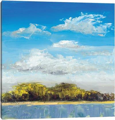 Approaching Shore Canvas Art Print