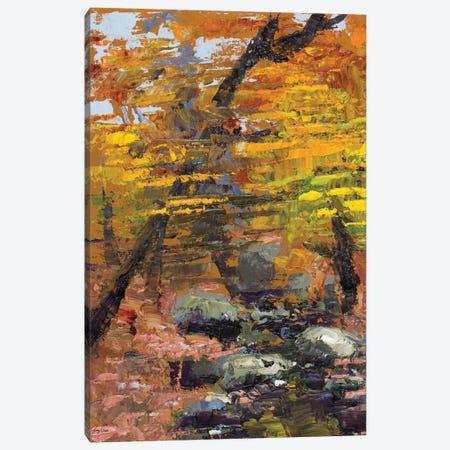 Autumn Woods Canvas Print #JGN4} by Jenny Green Canvas Print