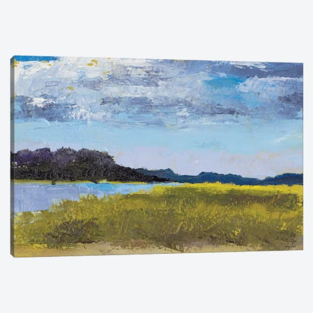 Blue Skies Canvas Print #JGN5} by Jenny Green Art Print