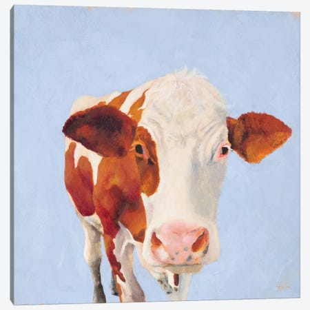 Cow Self Portrait Canvas Print #JGN7} by Jenny Green Art Print
