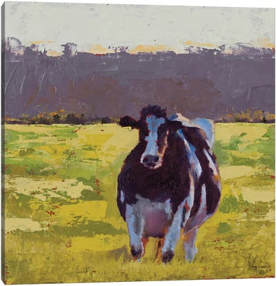 Fat Cow in the Field Canvas Art Print