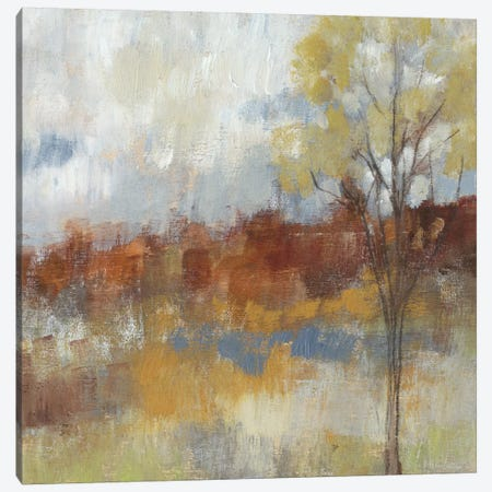 Sienna Field II Canvas Print #JGO101} by Jennifer Goldberger Canvas Art