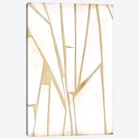 Antiqued Shards I Canvas Print #JGO1047} by Jennifer Goldberger Canvas Wall Art