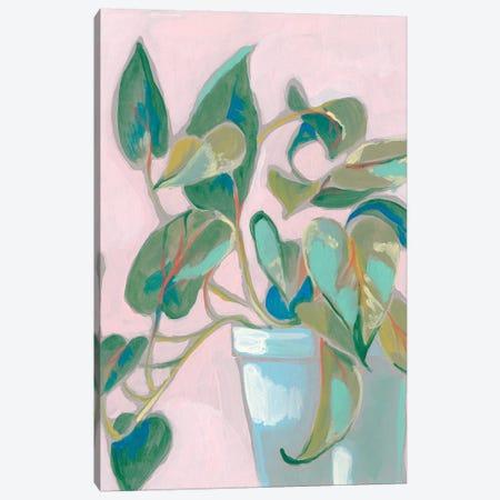 Quirky Plant I Canvas Print #JGO1053} by Jennifer Goldberger Canvas Artwork