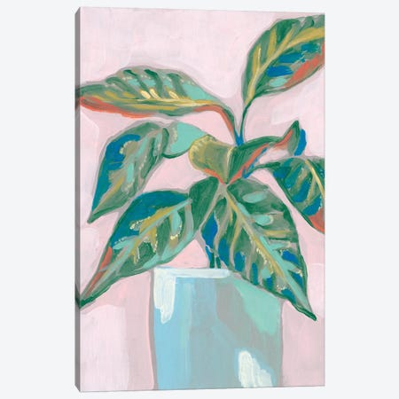 Quirky Plant II Canvas Print #JGO1054} by Jennifer Goldberger Canvas Art Print
