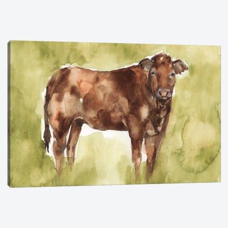 Cow in the Field I Canvas Print #JGO1061} by Jennifer Goldberger Art Print