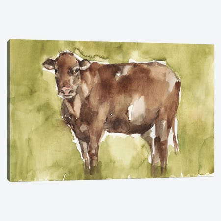 Cow in the Field II Canvas Print #JGO1062} by Jennifer Goldberger Art Print