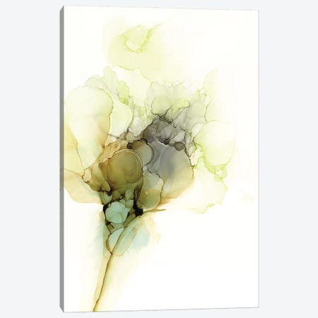 Fluid Bloom I Canvas Print #JGO1110} by Jennifer Goldberger Art Print