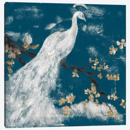 White Peacock on Indigo I Canvas Print #JGO1148} by Jennifer Goldberger Canvas Artwork
