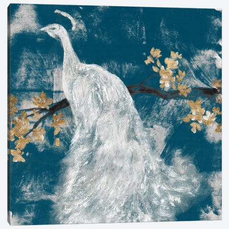 White Peacock on Indigo II Canvas Print #JGO1149} by Jennifer Goldberger Canvas Artwork