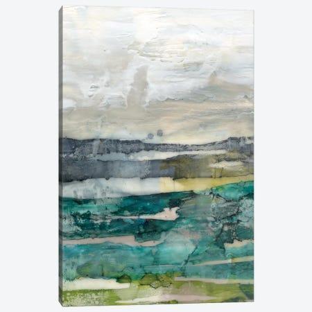Crackled Marshland II Canvas Print #JGO1163} by Jennifer Goldberger Canvas Art