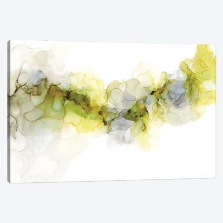 Emerging Mist II Canvas Print #JGO1170} by Jennifer Goldberger Canvas Print